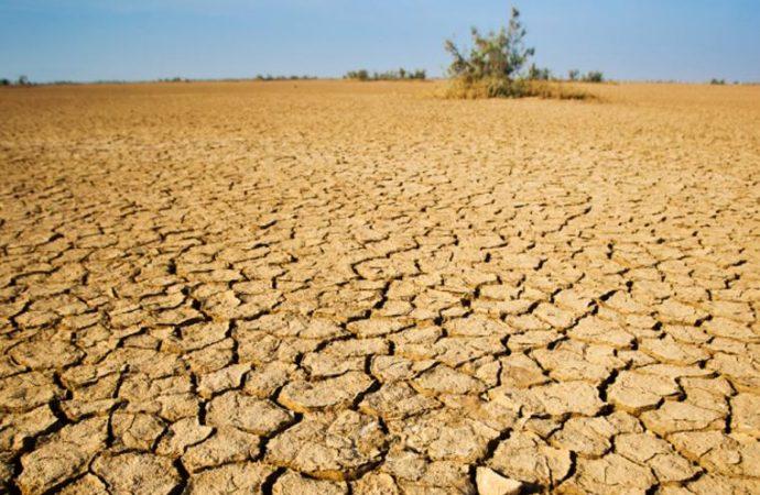 Alerta CNDH sobre efectos devastadores e irreversibles por degradación de suelos
