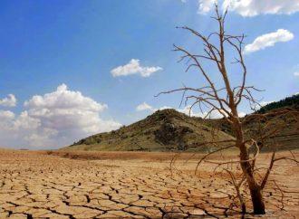 En México, 64% de los suelos presentan problemas de degradación