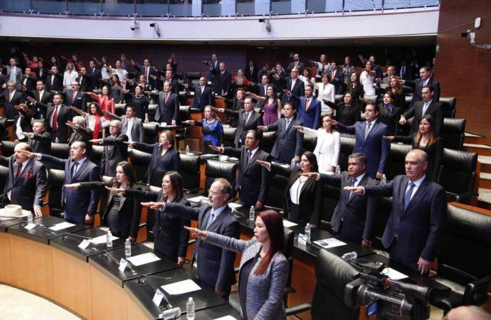 Senadores electos del PAN defenderán intereses ciudadanos