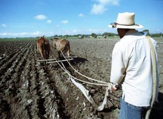 Agro mexicano queda blindado en tratado comercial de América del Norte