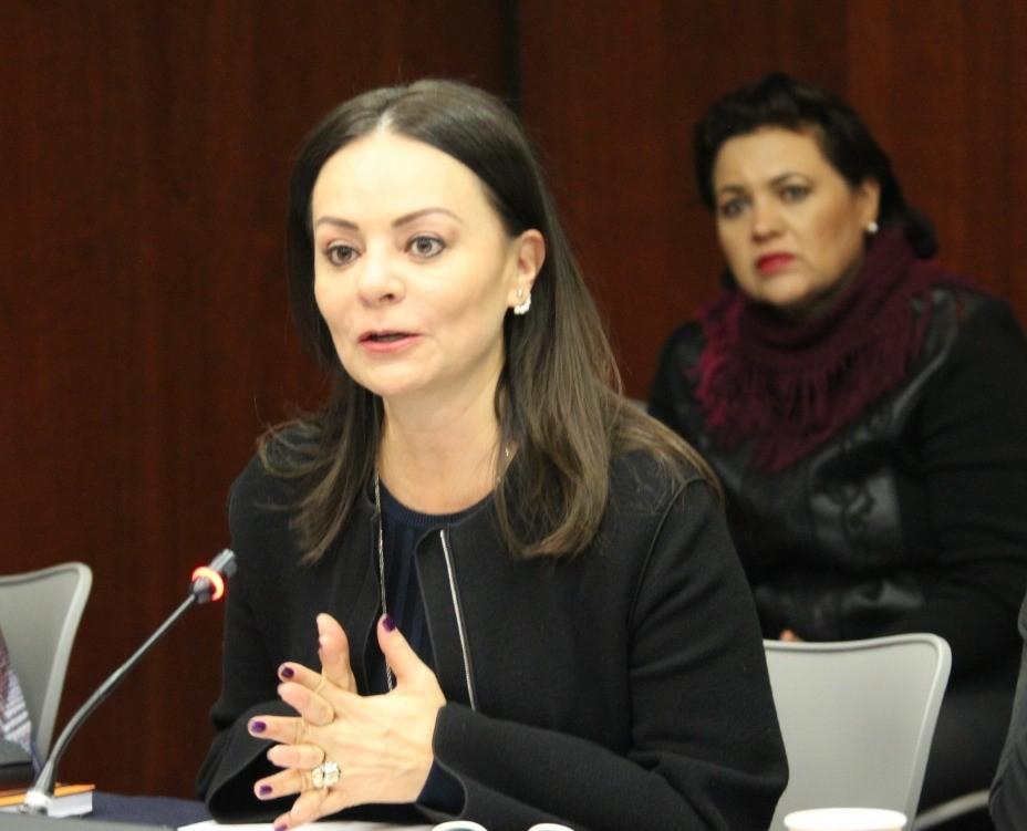 Seguiremos luchando contra los actos que violenten a las mujeres y niñas, afirma Nuvia Mayorga