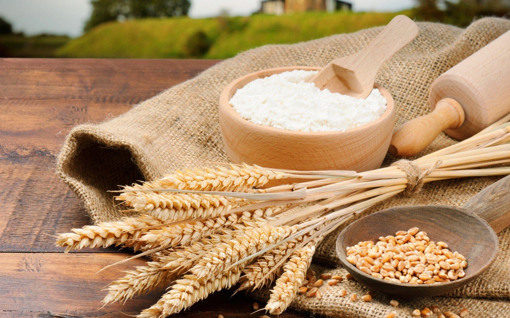 Llamamos a la industria a cumplir con las recomendaciones en la normativa para harinas fortificadas