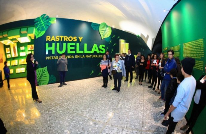 Museo de Historia Natural inaugura dos exposiciones sobre el universo y la vida animal