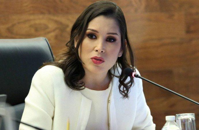 Diputada Ximena Puente asesora a países en materia de transparencia