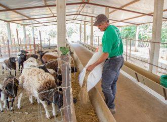 Compañía Minera Cuzcatlán ha invertido 177.2 millones de pesos en programas sociales de 2011 a la fecha