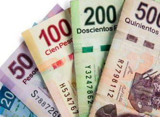 Proponen eliminar el uso de dinero en efectivo para el gasto público