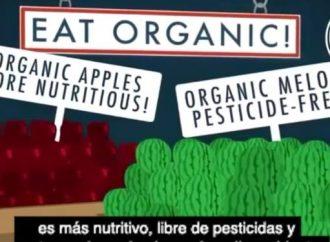 [Video] Alimentos orgánicos: mercadotecnia cara y sobrevalorada