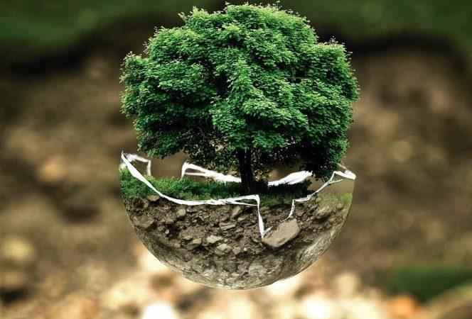 Día de la Tierra 2021: ¿por qué se celebra y cuál es su origen?